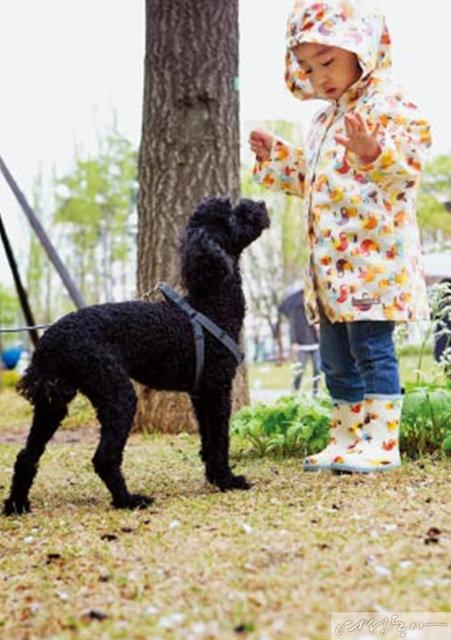 김미려·정성윤, 그리고 모아  이토록 행복한 펫팸족