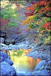 가을 경치 만끽할 수 있는 단풍명소