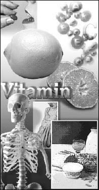 비타민의 다양한 효과 & 내게 맞는 비타민 선택법