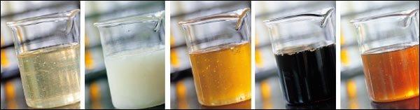 꿀 고르는 법 & 보관법
