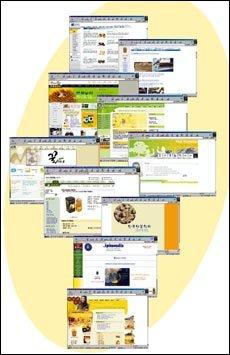 꿀 관련 사이트 및 단체