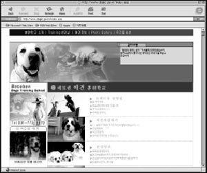 구입에서 장례까지... 각종 애완동물 사이트 74