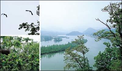 북한강 카누카약마을 어부체험 & 무인도 탐험