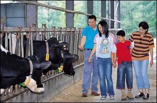 양궁선수 서향순씨 가족의 목장 체험