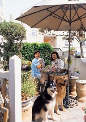 김청과 어머니 김도이씨가 오손도손 함께 사는 전원주택 첫공개