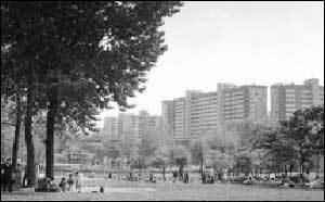 부동산 전문가 4인 강추! 유망 분양아파트 베스트 15 & 돈 되는 아파트 고르는 요령