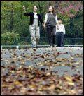 도심에서 가볼 만한 사색과 낭만의 낙엽길 14
