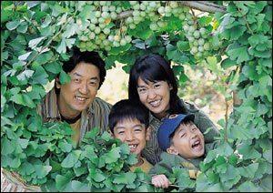 탤런트 이연경 가족과 함께 떠난 은행농장 체험여행