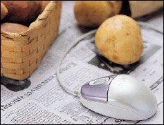 싸고 질 짛은 감자·고구마 살 수 있는 인터넷 쇼핑몰 7