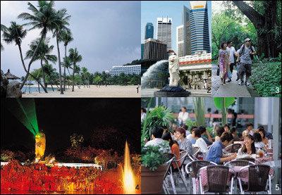독자 신세은·이근화 부부와 함께한 싱가포르 여행기