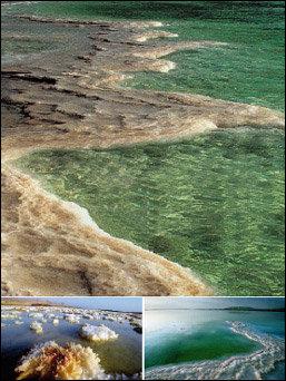 이스라엘 바다에서 온 심해수 & 머드 화장품 AHAVA
