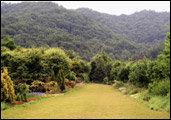 향긋하고 싱그러운 자연의 내음 가득~식물원 & 수목원 올가이드