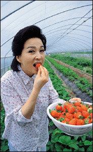 채식과 전원생활 즐기는 한혜숙의 자연친화 건강법 & 식습관 공개
