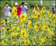 도심에서 즐기는 여유∼ 가족과 함께 가면 좋은 공원 13