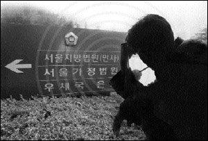 기러기 아빠 위장이혼 사건의 내막