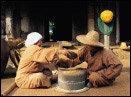 싱그러운 향기로 가득한 허브농장