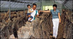 탤런트 류용진 가족의 버섯농장 체험