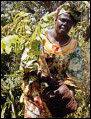 아프리카 여성 최초로 노벨평화상 수상, 환경운동의 '대모' 왕가리 마타이