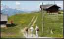 스위스인의 라이프스타일 & 생활감각