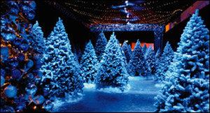 산타와 흰눈꽃의 환상적인 세계로 떠나요~ 가족형 테마파크 산타킹덤