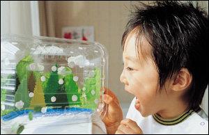 재활용품으로 만든 아이디어 장난감 D.I.Y