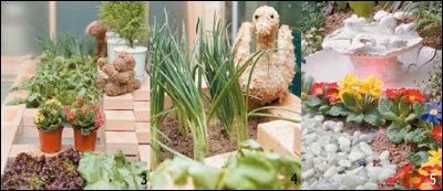집안에 작은 정원 만들기, 그린 인테리어