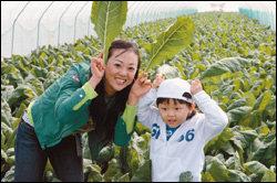 가족이 함께 한 풀무원 녹즙 농장 체험기