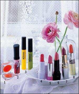 반짝이는 립스틱 & 봄빛 섀도