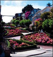 샌프란시스코 스타일 집 꾸밈
