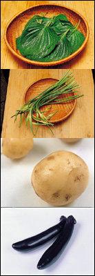 비타민과 미네랄이 풍부한 6월의 제철야채