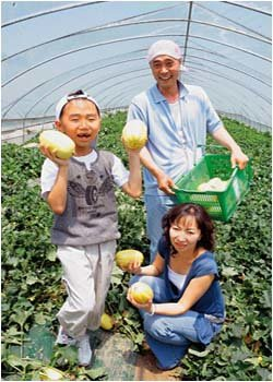 탤런트 이재용 가족의 참외농장 체험