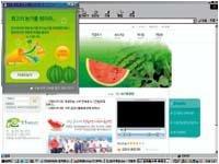 유기농 수박 & 참외 직판 사이트