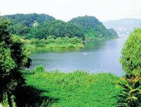 한강변 공원 & 생태체험 프로그램