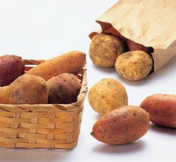 식이섬유가 많아 변비 예방에 효과적~ 감자 & 고구마