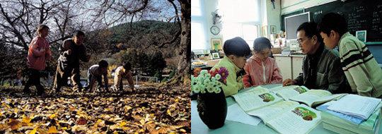 김용택 교사가 일러주는 아이들의 글쓰기 지도