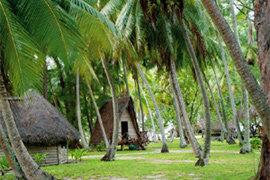열대자연과 고갱 그림으로 유명한 타히티