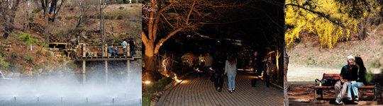 서울대 캠퍼스 투어