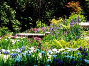 평강식물원 여름 나들이