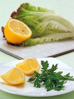 피부미백과 여드름 치료에 효과적 상추