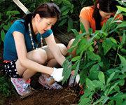 수확의 기쁨 안겨주는 체험 마을 꼼꼼 가이드
