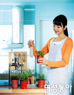 내 손으로 길러 먹는 무공해 야채