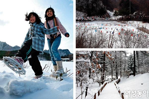 휴양림 겨울맞이 행사