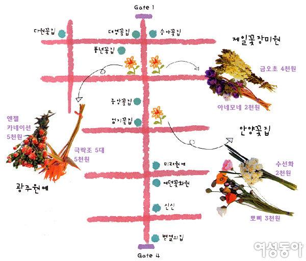 봄 내음 가득한 꽃시장 꼼꼼 가이드