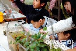 '선유도 공원 생태프로그램'