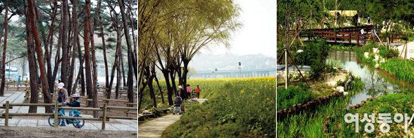 유채꽃향, 솔향, 허브향… 향기 맡으며 걷기 좋은 도심 속 산책로