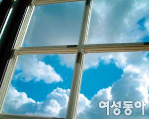 내 마음의 창  (窓)