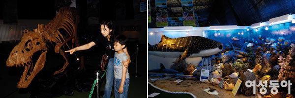과거로의 공간여행, 쥬라기어드벤처2007