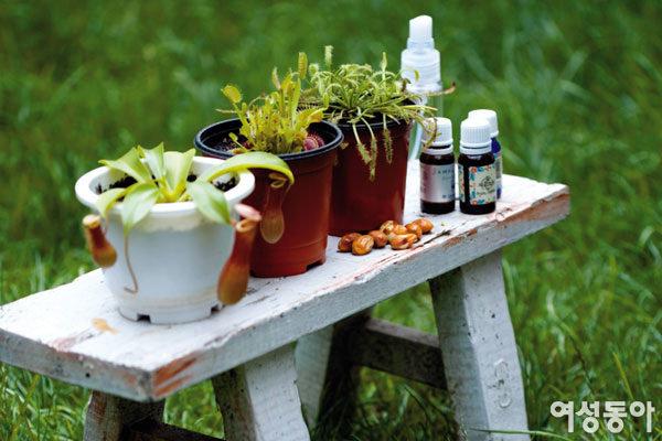 안심하고 사용하는 친환경 살충제