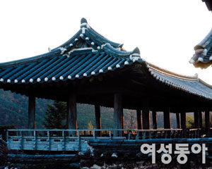 우리 전통문화와 정신을 배우는 여행~ 경북  안동