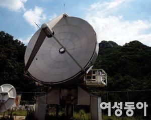 명문대 캠퍼스 무료 공연·전시 가이드